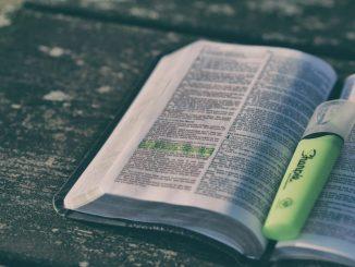 Diakonia Słowa